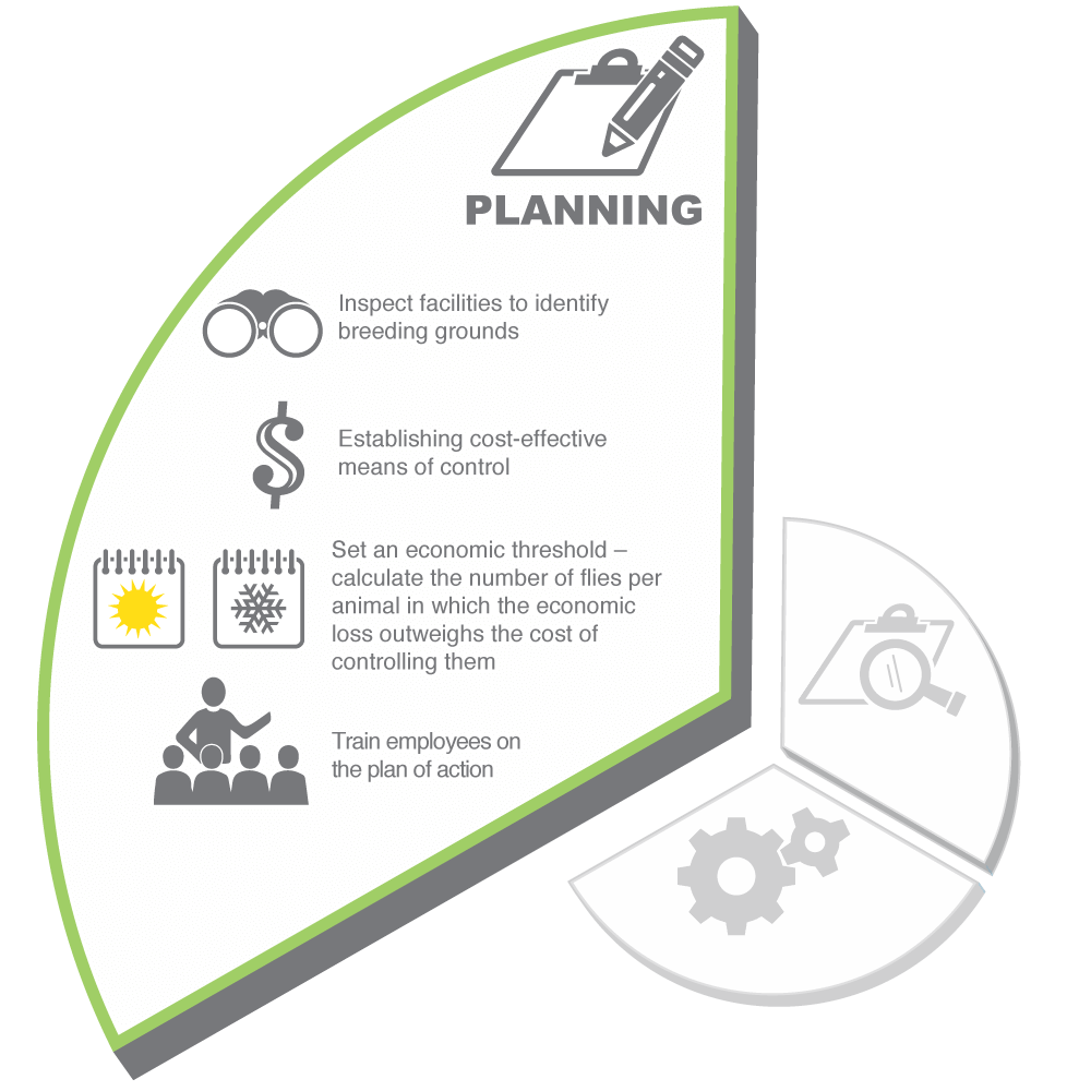 Planning is an important part of an integrated pest management (IPM) program for fly control for pigs. Click here to learn best practices.